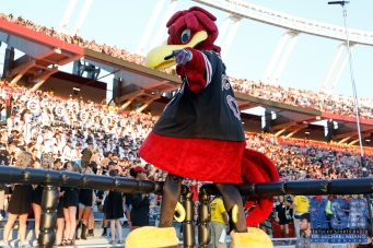 The raucous Williams-Brice stadium crowd was expecting a big South Carolina victory.